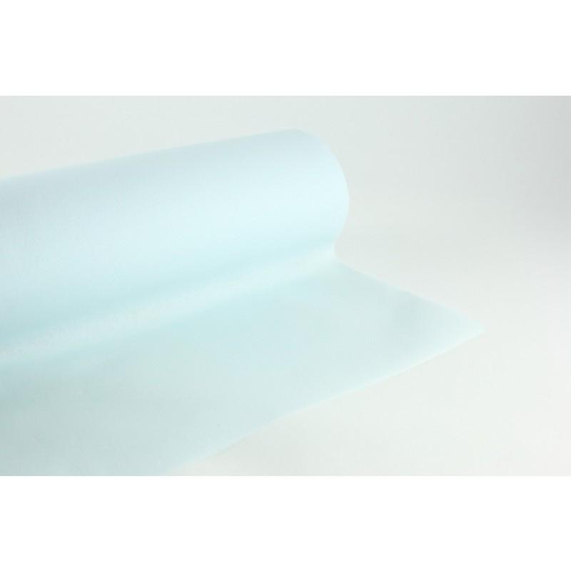 Nappe en papier jetable non tiss m x 40m ciel fournimag - Cyberplus paiement net ...